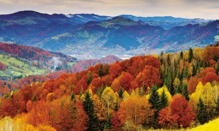 Otoño y Naturaleza en Asturias