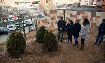 La alcaldesa visita las obras del talud de la avenida de Irlanda con una inversión de 240.000 euros y más de 350 árboles y arbustos
