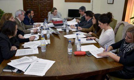 Licitadas la ejecución de obras para la zanja única y la enajenación de parcela en el Paseo de Rosa