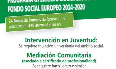 El Ayuntamiento amplía hasta el 6 de abril el plazo de inscripción para participar en dos itinerarios del Programa de Garantía Juvenil