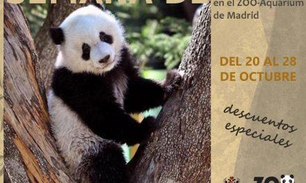 El Zoo de Madrid celebra la Semana de Toledo con descuentos de más del 40 por ciento para los toledanos en la semana del 20 al 28