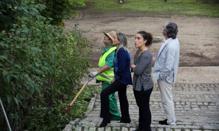 El Ayuntamiento mantiene trabajos de desbroce, limpieza y albañilería en los barrios de Toledo a través del Plan de Empleo