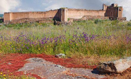 Castillo de Montalbán (San Martín de Montalbán)